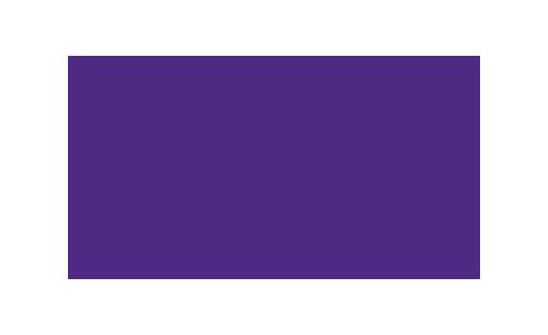Logo-LSU-100